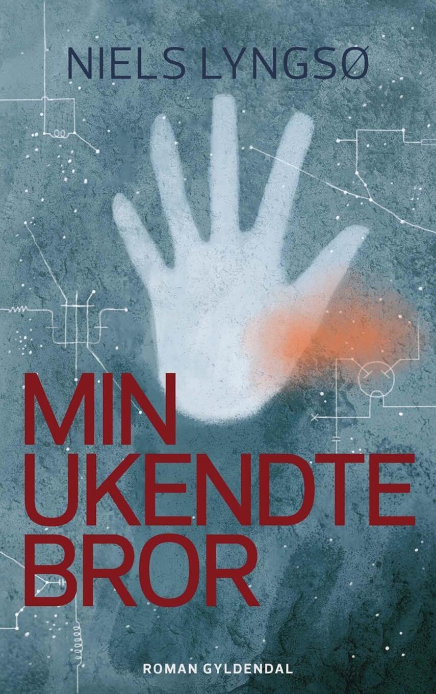 Niels Lyngsø: Min ukendte bror : roman