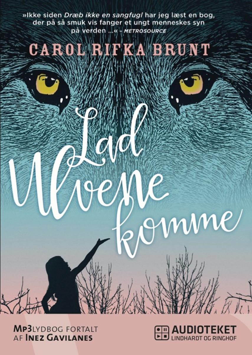 Carol Rifka Brunt: Lad ulvene komme