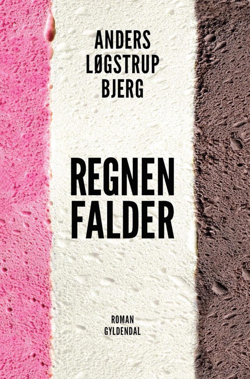 Anders Løgstrup Bjerg (f. 1990): Regnen falder : roman
