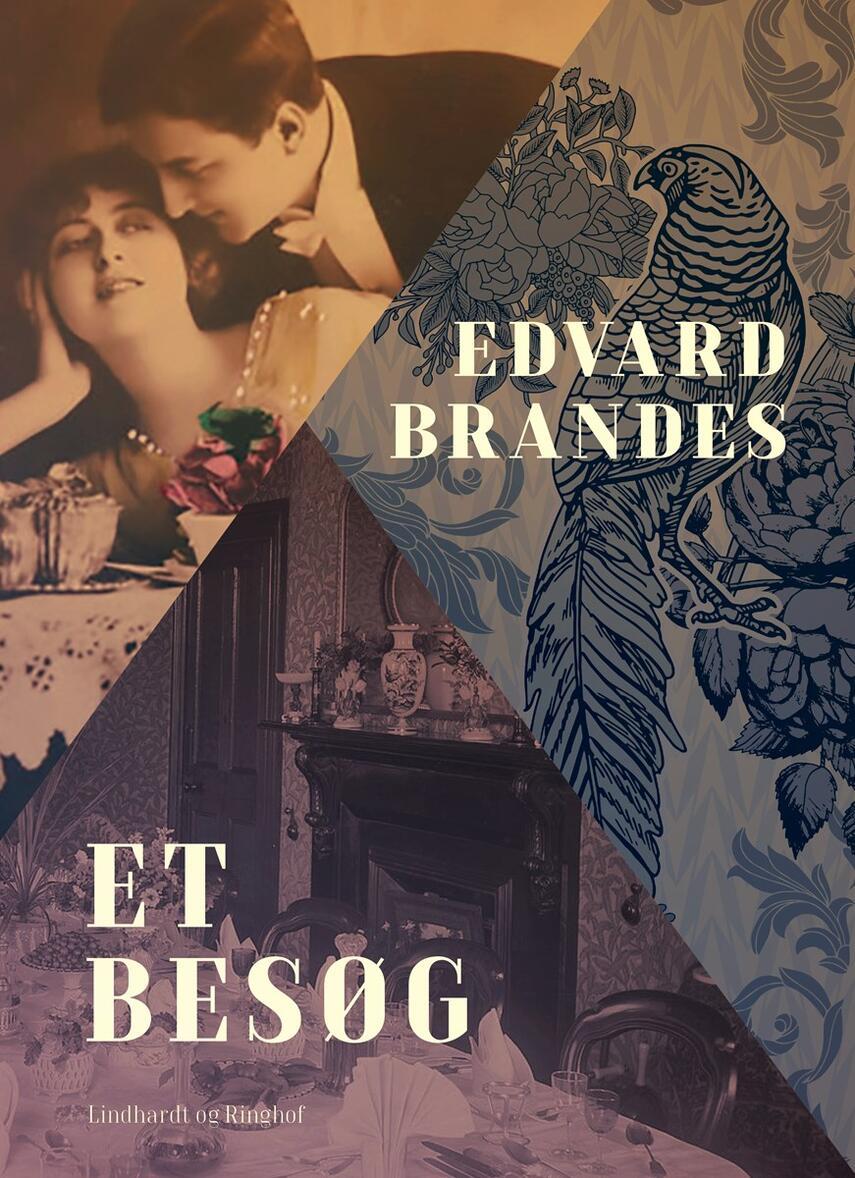 Edvard Brandes: Et Besøg