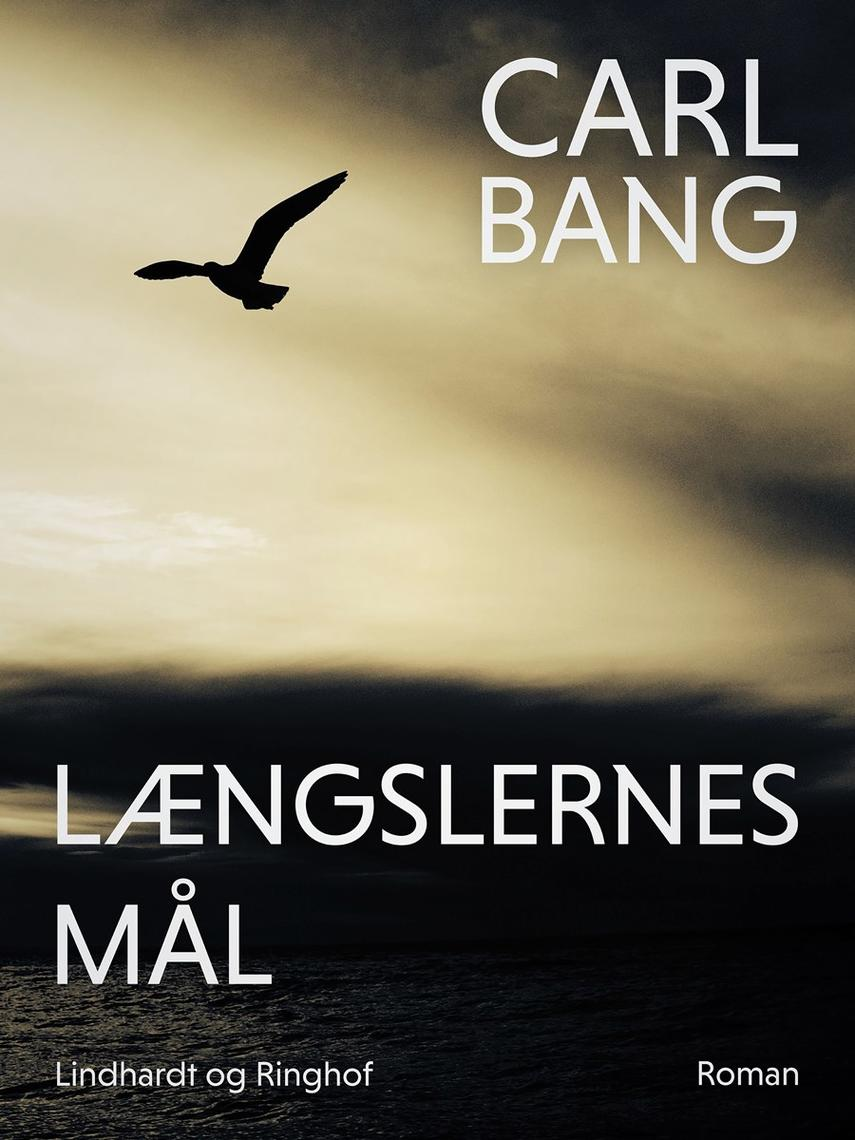 Carl Bang: Længslernes mål : roman