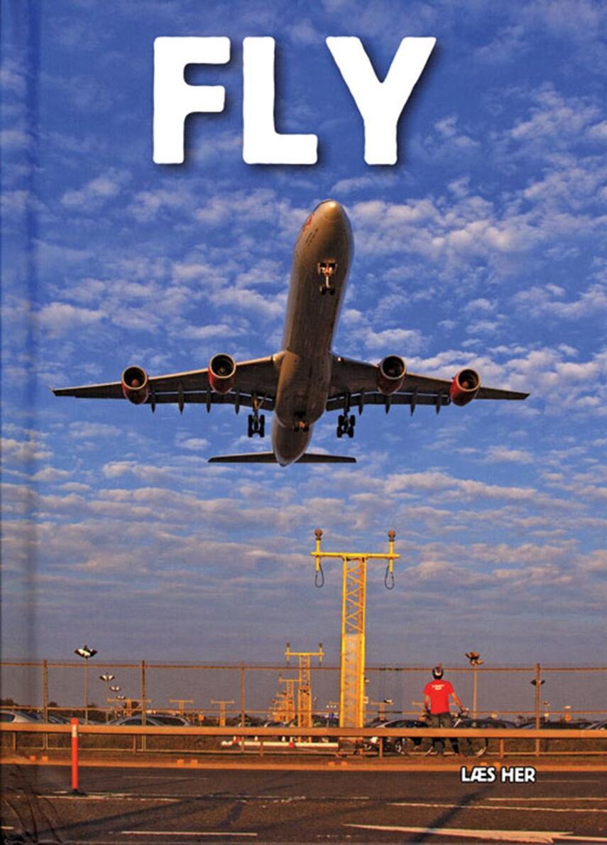 Ole Steen Hansen (f. 1957): Fly