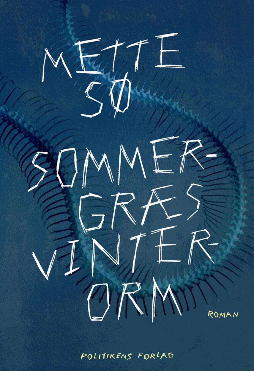 Mette Sø: Sommergræs, vinterorm : roman