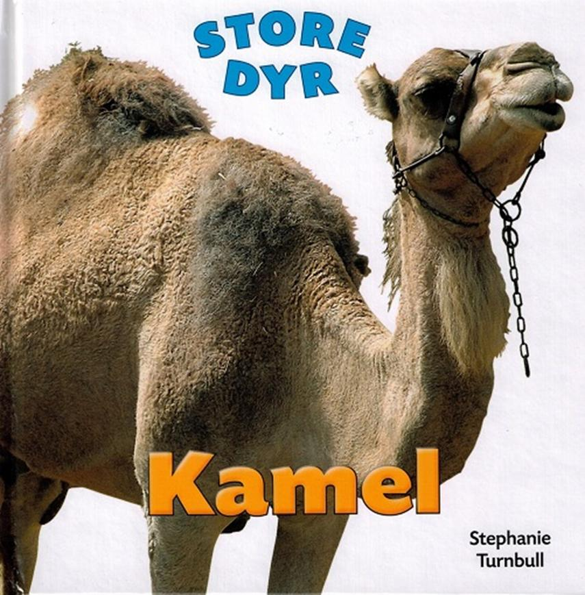 Stephanie Turnbull: Kamel