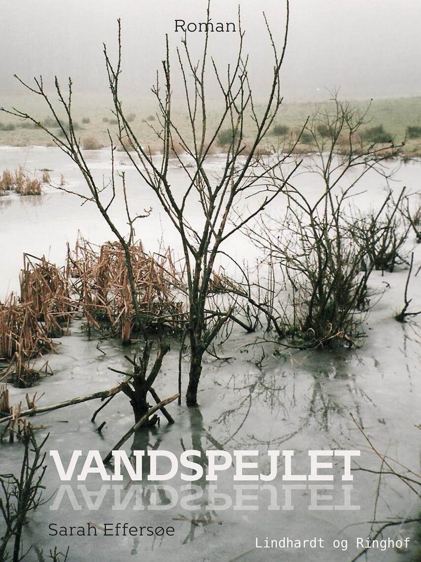 Sarah Effersøe (f. 1963): Vandspejlet : roman