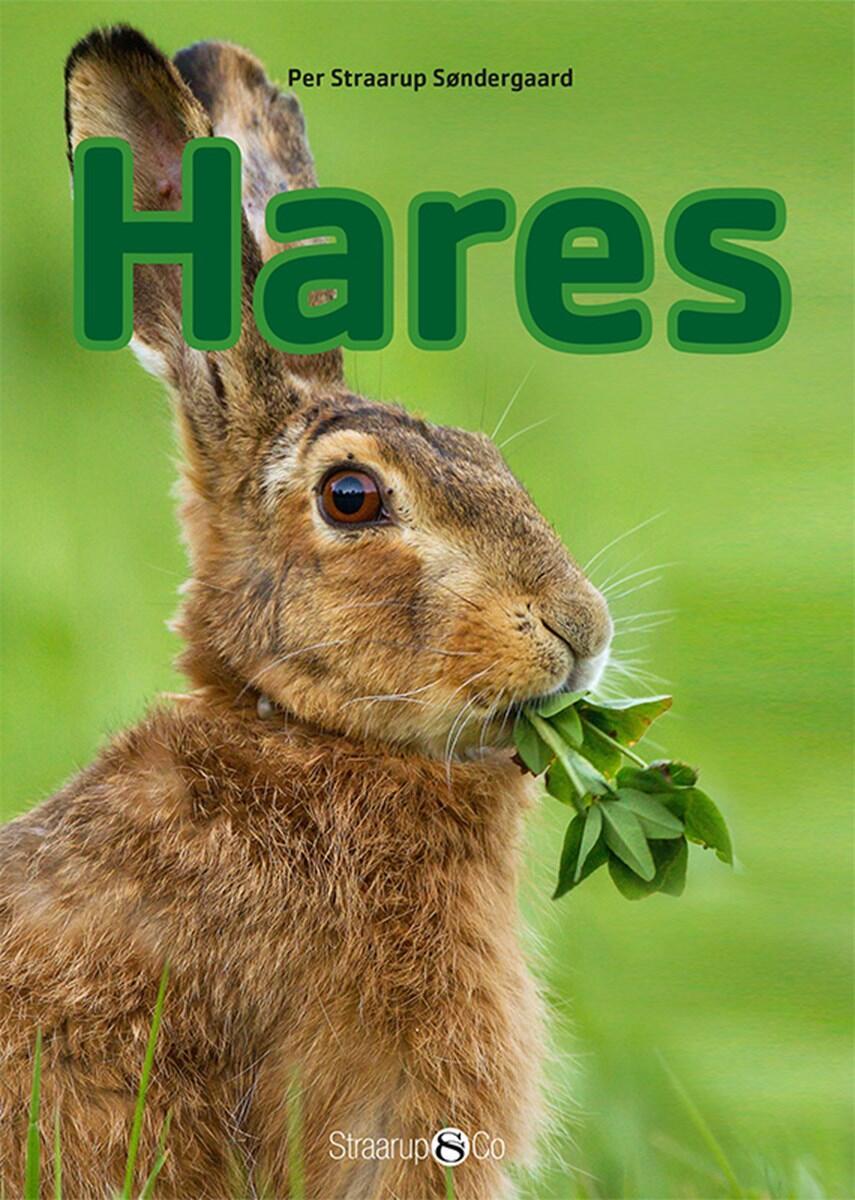 Per Straarup Søndergaard: Hares
