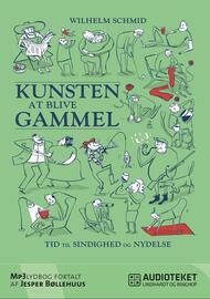 Wilhelm Schmid: Kunsten at blive gammel : tid til sindighed og nydelse