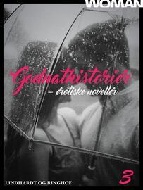 : Godnathistorier : erotiske noveller. 3