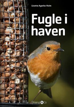 Lisette Agerbo Holm: Fugle i haven