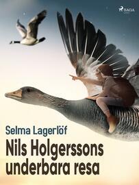 : Nils Holgerssons underbara resa