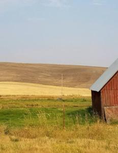 træhus med amerikansk flag på en øde mark