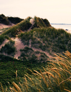 klitter og strand