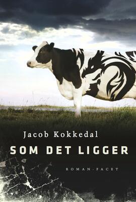 Jacob Kokkedal: Som det ligger